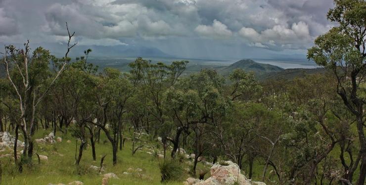Mt Stuart Landscape